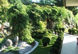 Garten (15)